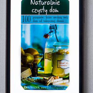 Naturalnie Czysty Dom - ebook